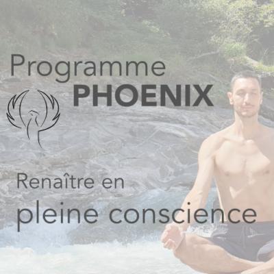 Programme Phoenix